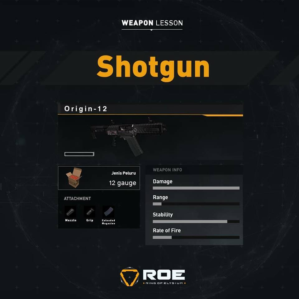 Ring of Elysium Origin-12 Shotgun