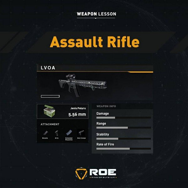 ROE Assault Rifle - LVOA