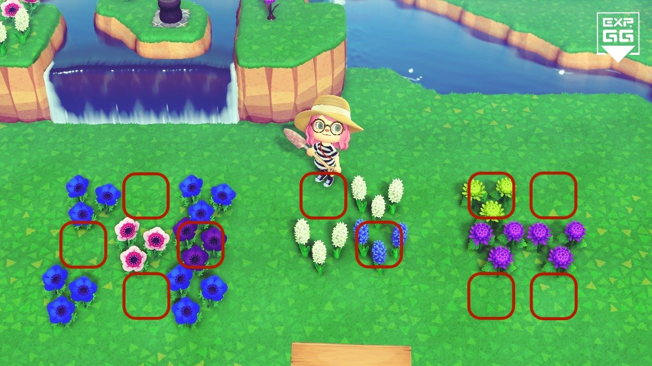 《動森》特殊異色花怎麼種?交配、培育、養殖方法大全!