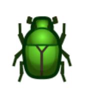 日銅鑼花金龜